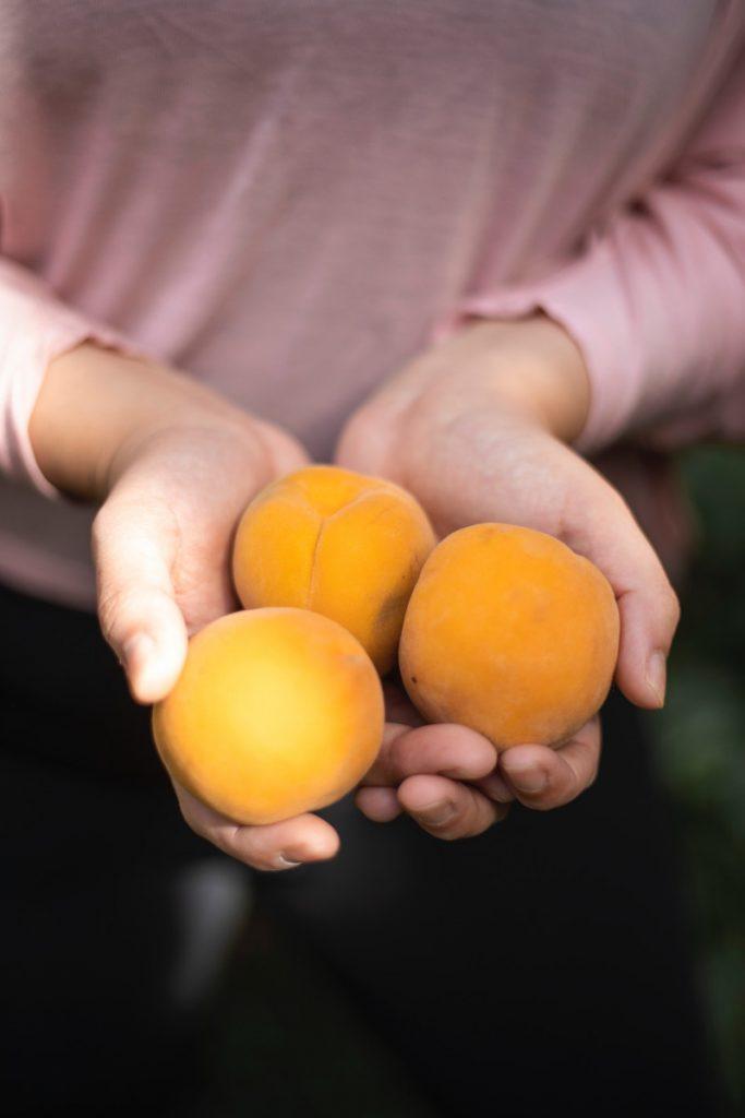 La livraison de fruits en entreprise: pour plus d'efficacité au travail